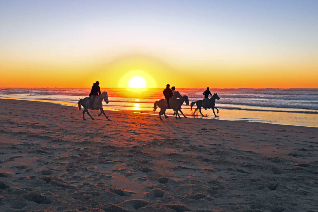 Family-Friendly Vacation Ideas - Taiwan Beach Horse Riding